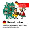 Német online garantált csoportos nyelvtanfolyam